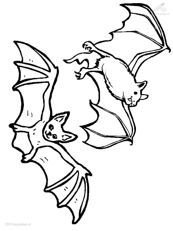 Coloringpage: bat-coloring-page-3
