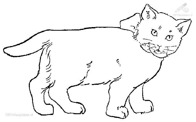 Image Result For Pete Cat Coloring Page Cats Coloring
