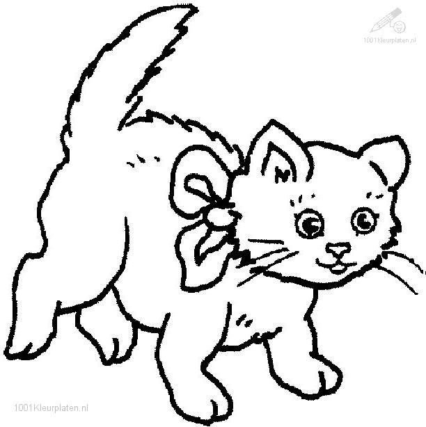 Cat Coloring Pages Pdf : Cat coloring page