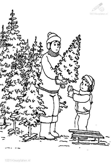 Lets get a Christmas Tree