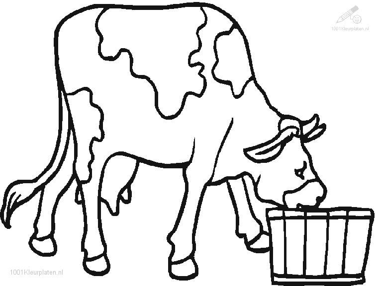 1001 COLORINGPAGES : Animals >> Cow >> Cow Coloring Page