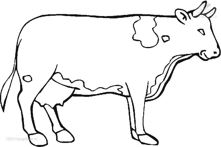 Cow Coloring Page