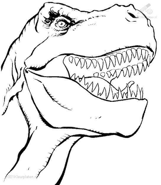 Prehistoric  Dinosaur Coloring Page