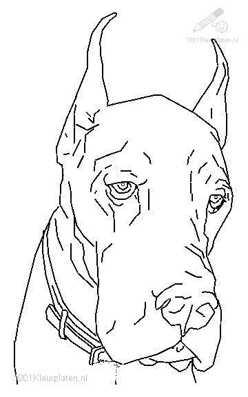 Coloringpage: dog-coloring-page-6