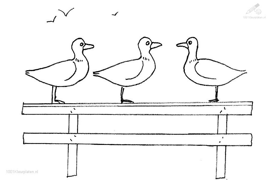 Coloringpage: duck-coloring-page-18