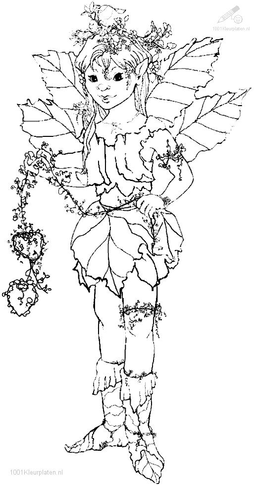 1001 COLORINGPAGES : Christmas >> Elf >> Elf coloring page