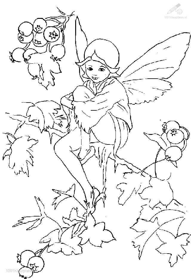 Elfs Coloring Page