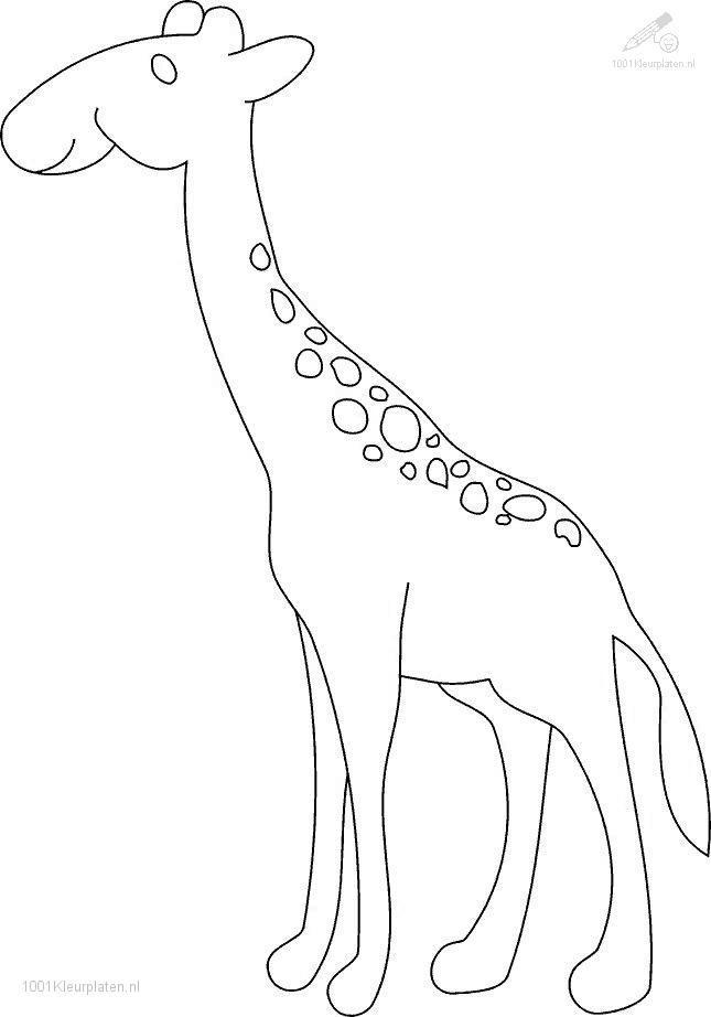 Coloringpage: giraffe-coloring-page-18