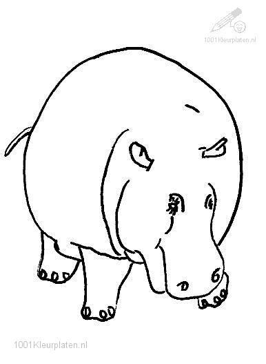 Coloringpage: hippo-coloring-page-15