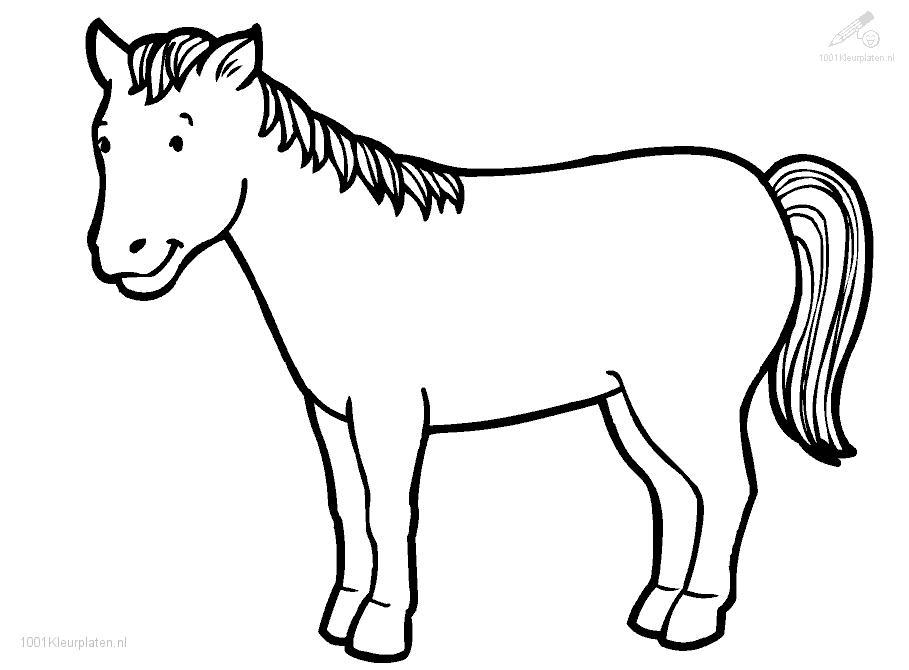 1001 COLORINGPAGES : Animals >> Horses >> Horse Coloring Page
