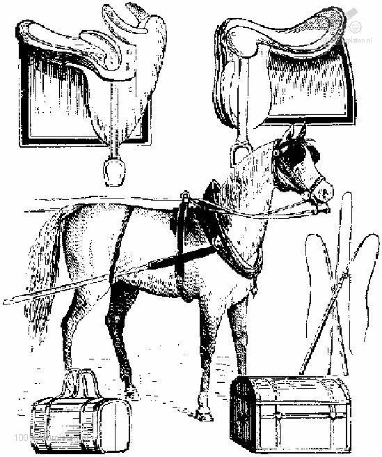 Coloringpage: horse-coloring-page-11