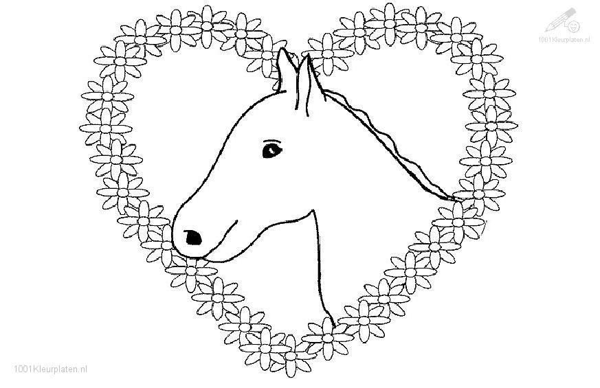 Coloringpage: horse-coloring-page-4