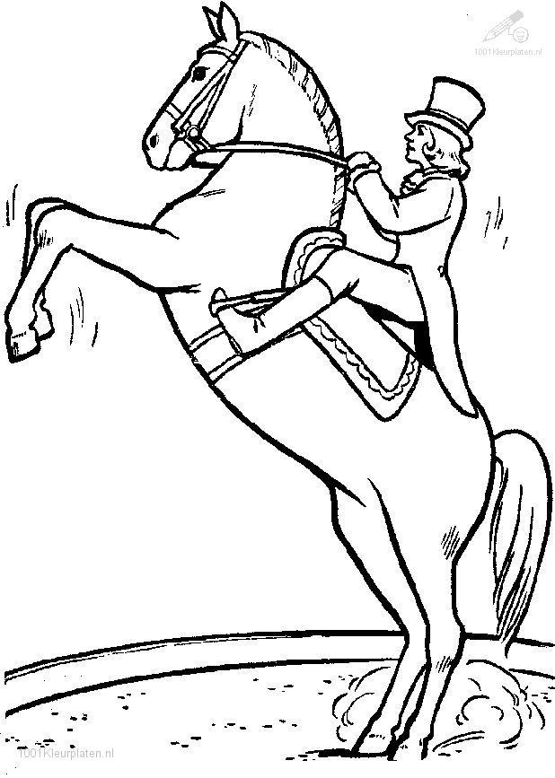 Coloringpage: horse-coloring-page-7