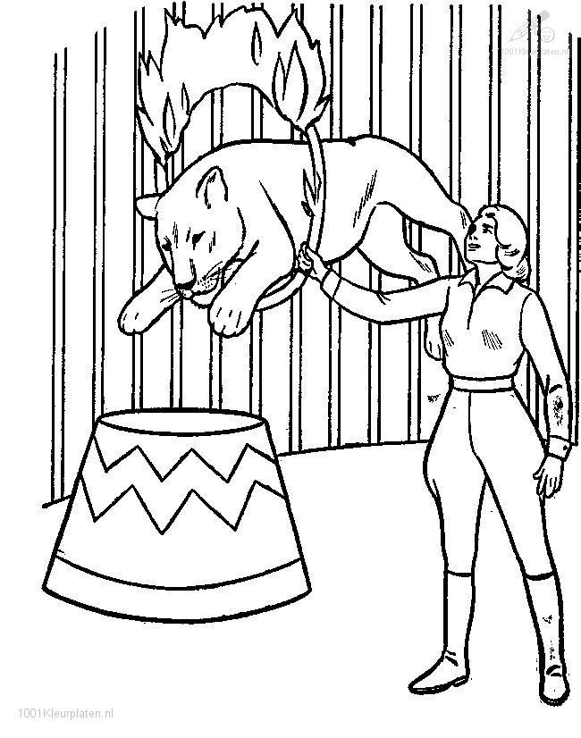 Coloringpage: lion-coloring-page-12