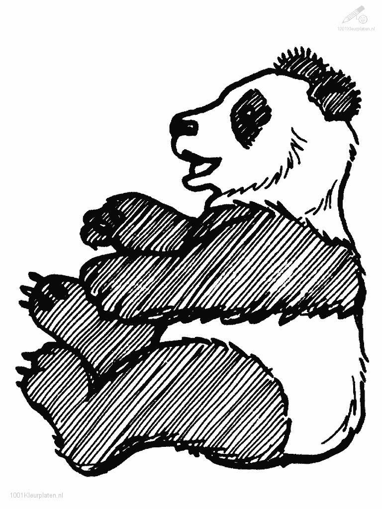 Coloringpage: panda-coloring-page-1