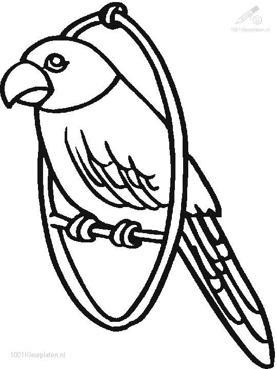 1001 COLORINGPAGES : Animals >> Birds >> Parrot Coloring Page