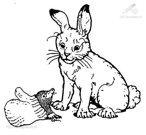 Coloringpage: rabbit-coloring-page-1