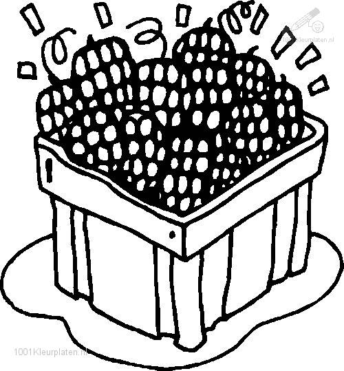 raspberry coloring page - free coloring pages of raspberry