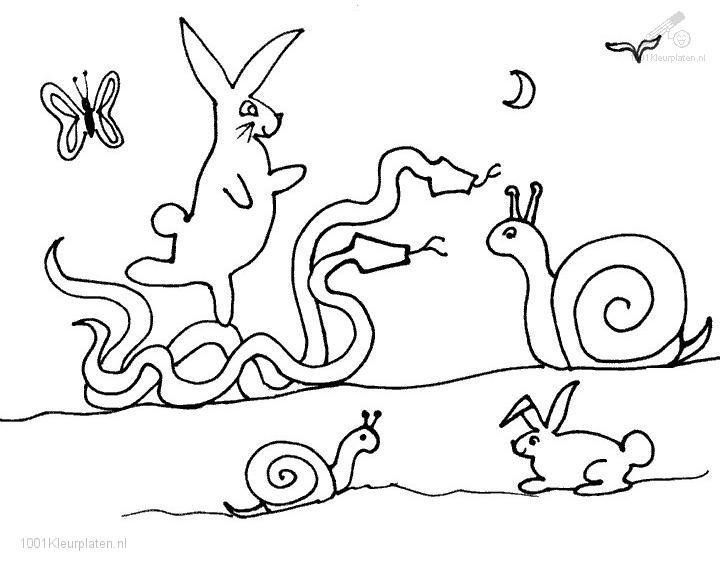Coloringpage: snail-coloring-page-9