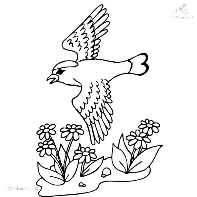 Coloringpage: spring-coloring-page-14