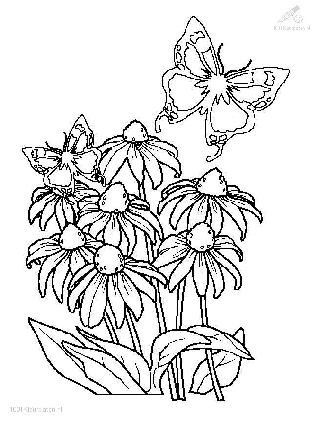 Coloringpage: spring-coloring-page-3
