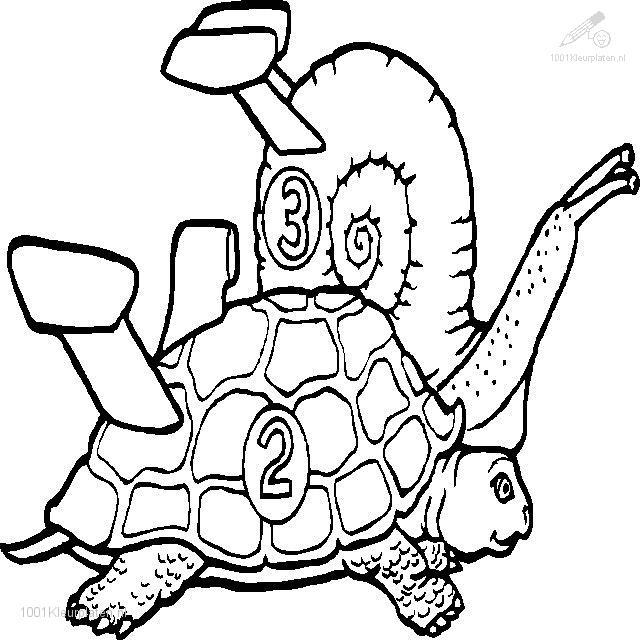 Coloringpage: turtle-coloring-page-17