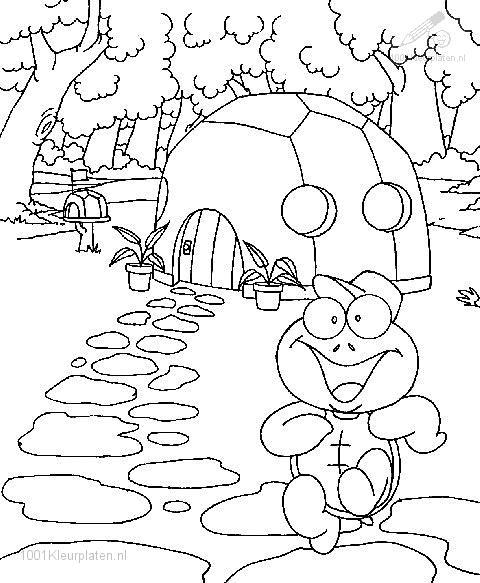Coloringpage: turtle-coloring-page-7