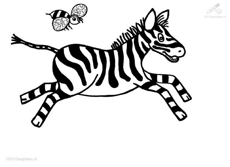 Coloring Pages For Zebra : Coloring page zebra « online coloring