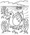 Duck Coloring Page>> Duck Coloring Page