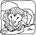 Lion Coloring Page >> Lion Coloring Page