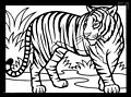 Tiger Coloring Page>> Tiger Coloring Page
